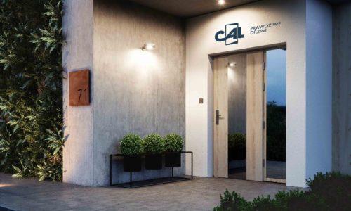 CAL: drzwi znaświetlem wklasie RC2
