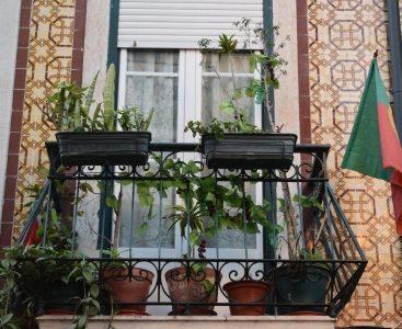Portugalia towyzwanie dla producentów okien