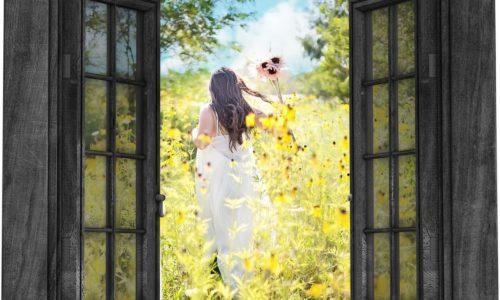 Konkurs: Okno namajówce