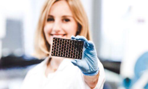 Rusza produkcja ogniw solarnych dla stolarki