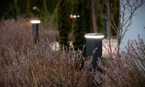 Oświetlenie na podjeździe i w ogrodzie