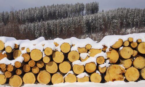 Brak drewna i drożyzna dotykają branżę w całej Europie